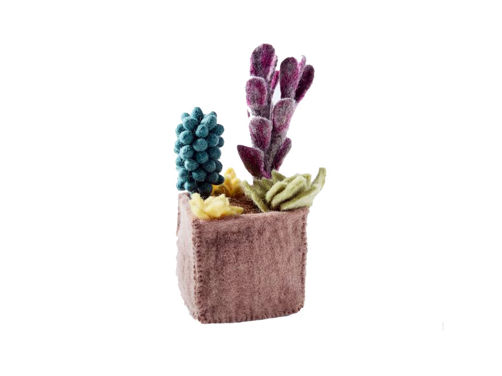Stylish Cactus Decor For The Home